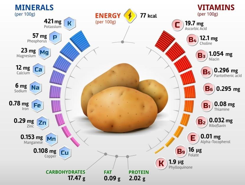 hogar-feliz-dieta-balanceada